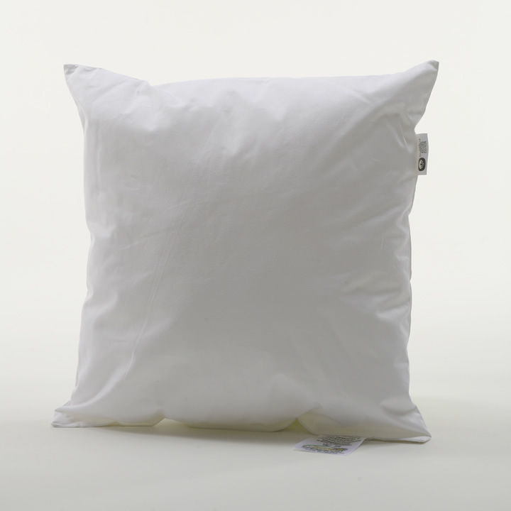 Pillow_insert
